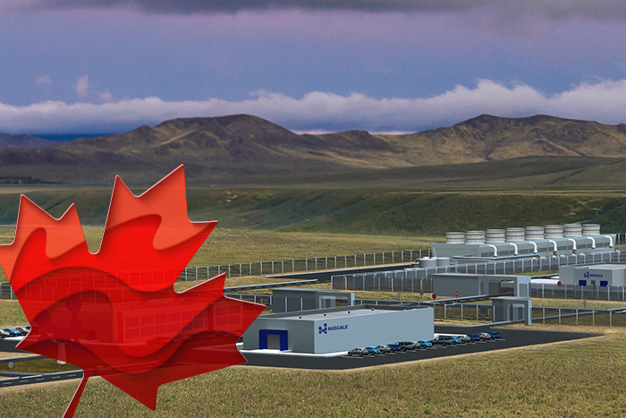 NuScale plant design with maple leaf